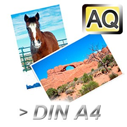 Poster & Fotos scannen bis DIN A3 in Archiv-Qualität